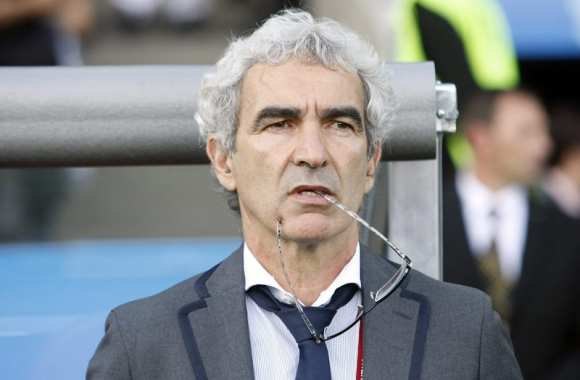 Domenech consultant en National