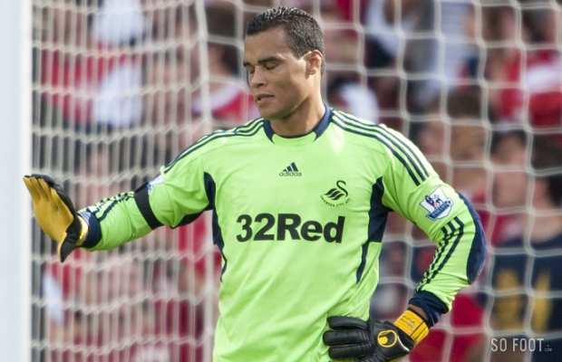 Michel Vorm (Swansea City)