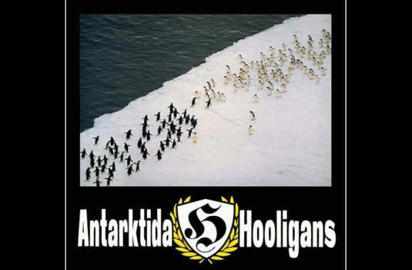 Photo : Antarctique Hooligans