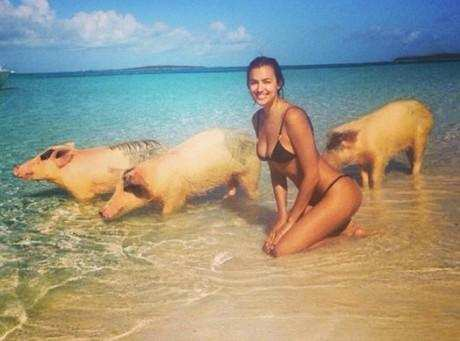 Photo : Irina Shayk et les cochons