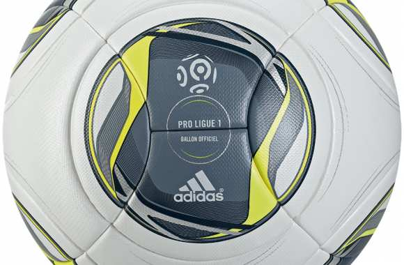 Photo : Le nouveau ballon de la L1