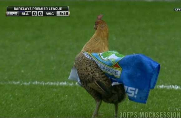 Photo : Le poulet de Blackburn