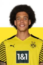 Photo de Axel Witsel
